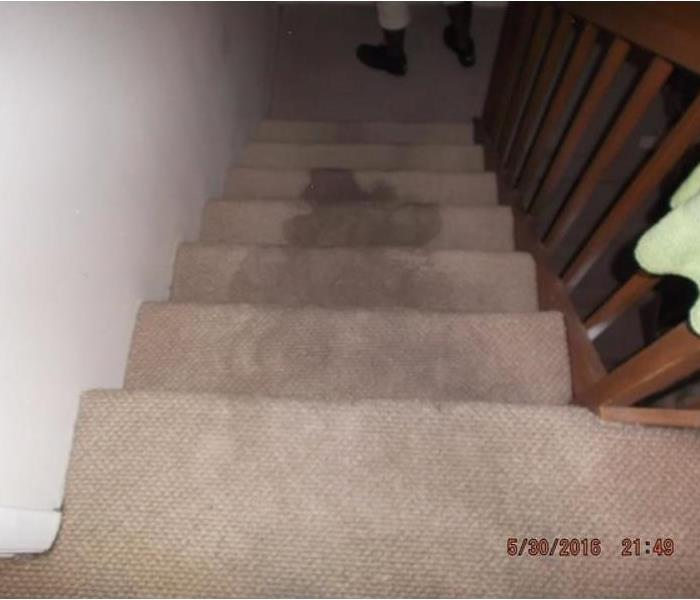Carpet Cleaning Job Before