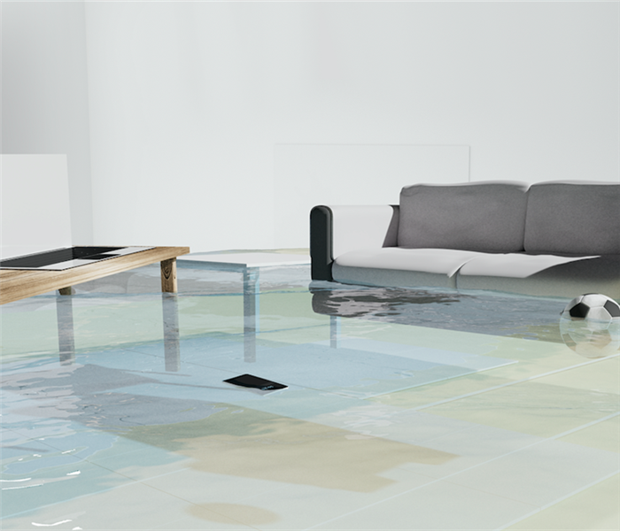 Flooded living room.