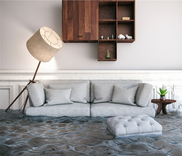 water damaged living room with sofa and lamp