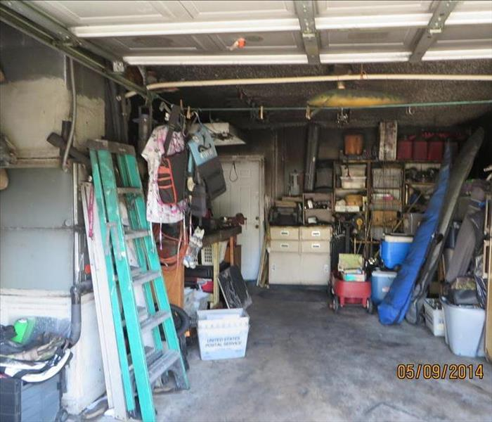 Mold Remediation Battling Mold in Your Garage