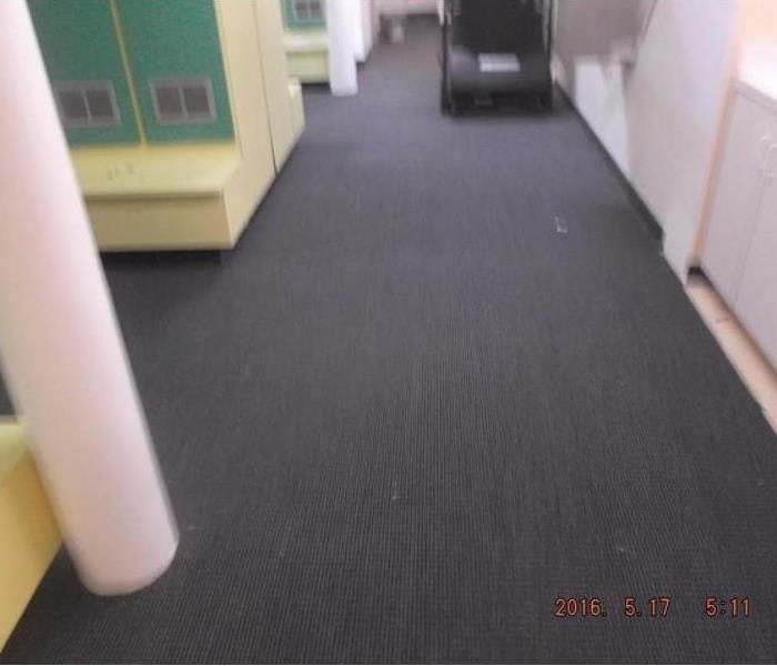 Commercial 5 Reasons to Get a Commercial Carpet Cleaning