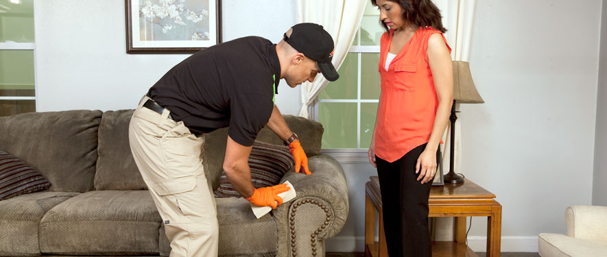 Lake Worth, FL carpet upholstery cleaning