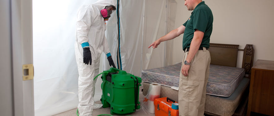 Lake Worth, FL mold removal process